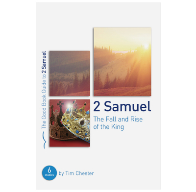 2 Samuel: The Fall and Rise of the King (ebook)