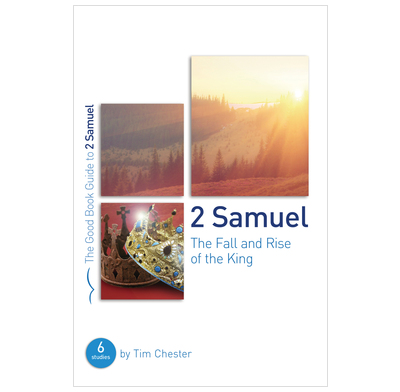2 Samuel: The Fall and Rise of the King